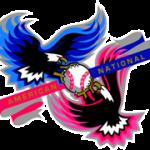 MLB Interleague Logo